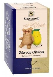 Zázvor - citrón, porciovaný čaj 32g